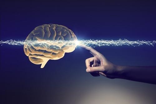 Hafıza Teknikleri kursu